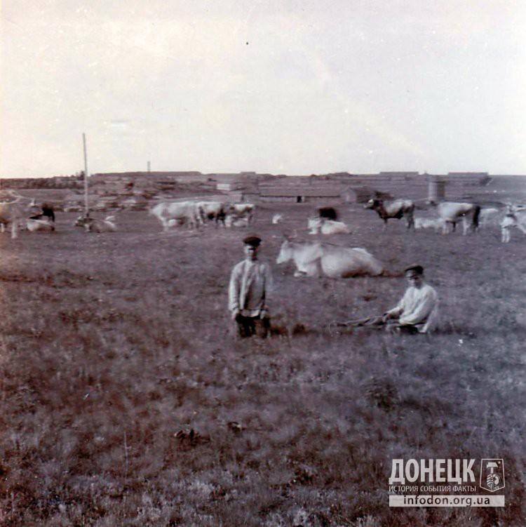Пастухи в поле