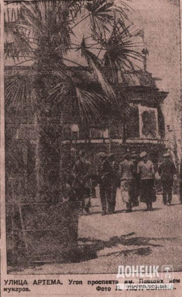 1936 год. Артема и сквер Павших коммунаров. Тропические растения на донецкой земле