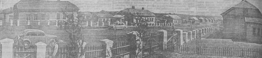 Вид поселка Победа в городе Сталино
