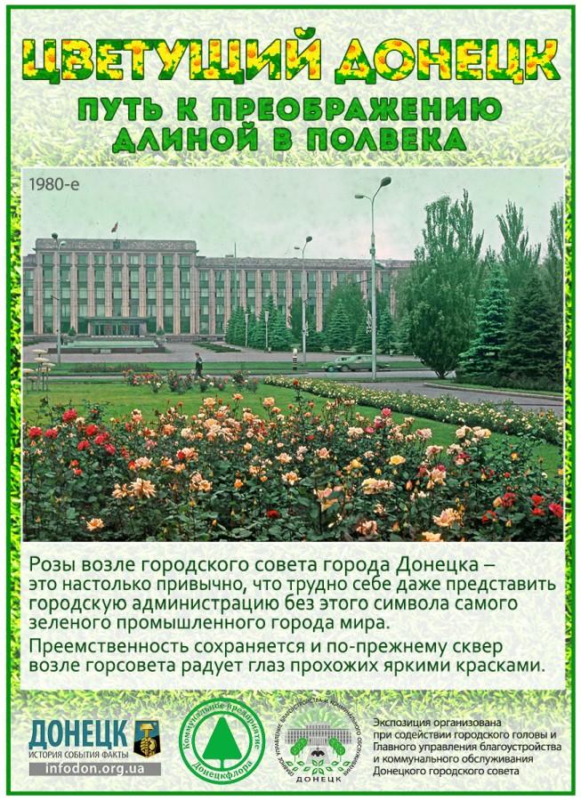 infodon_flora_24