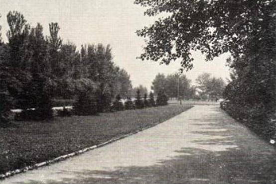 Входная аллея парка имени Ленинского комсомола, являющегося составной частью комплексной зоны отдыха в Кальмиусе