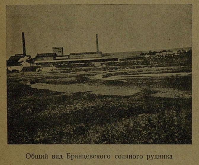 Общий вид Брянцевского соляного рудника